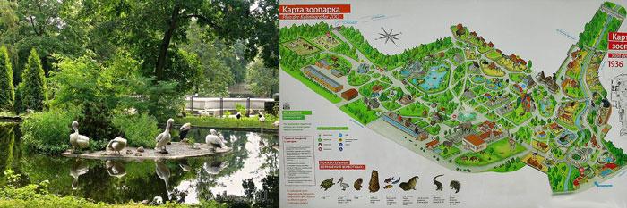 Калининград: зоопарк карта