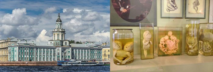 Санкт-Петербург: Кунсткамера